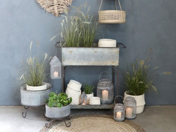 Display of metal planters with plants