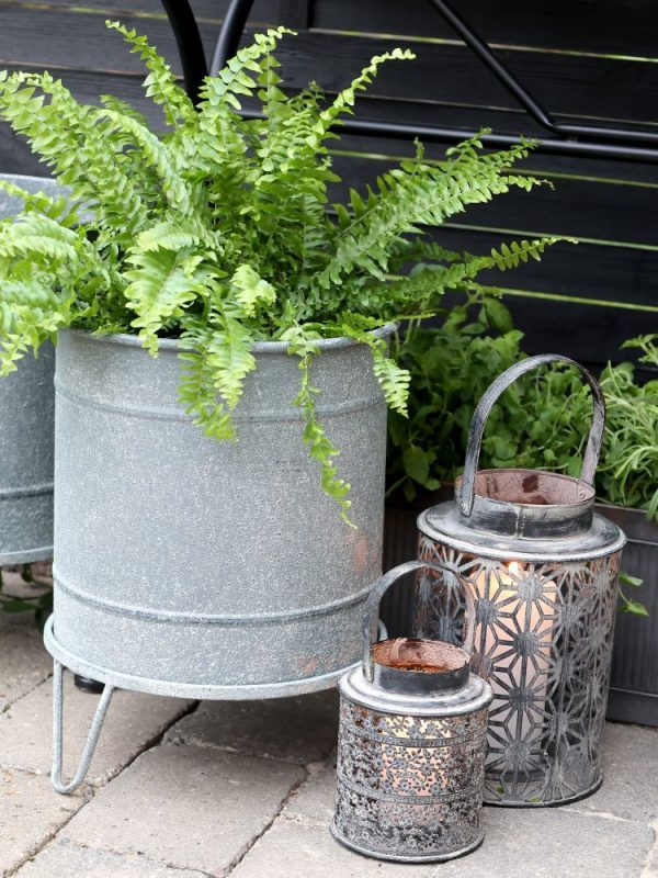 Metal planters displayed with plants and lanterns