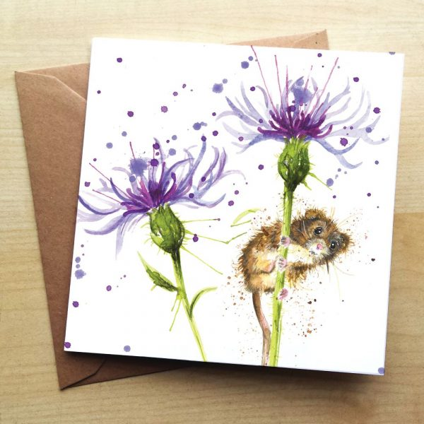 Two cornflowers with a mouse climbing up the stalk of one of them