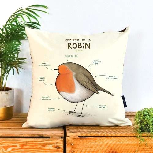 """A robin on a cushion with the title """"anatomy of a robin"""" across the top. There are arrows pointing to various points on robin with descriptions"""