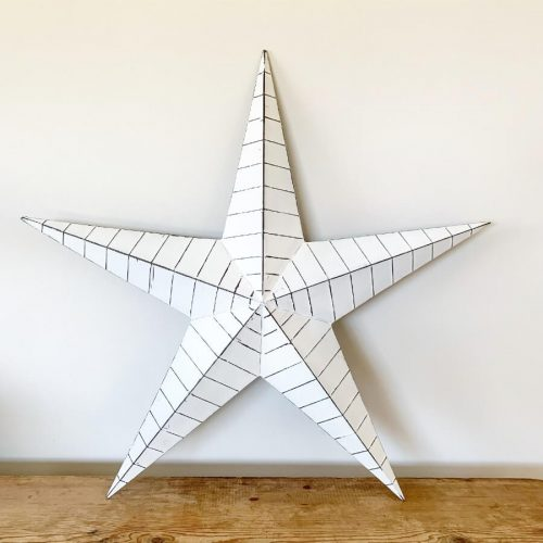 5 point white metal star with lines around it in a web design