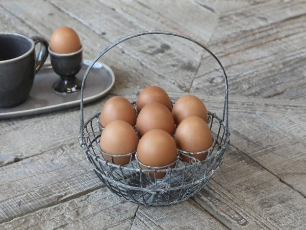 metal basket with 7 individual egg holders within frame