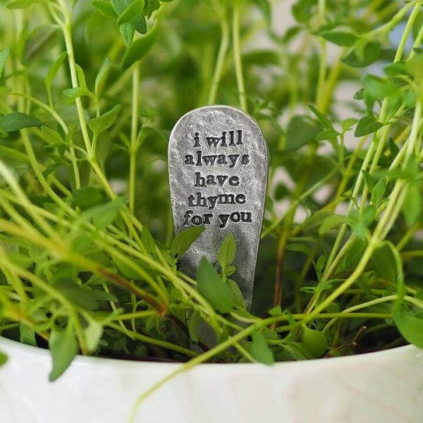 Thyme plant with a plant marker in it