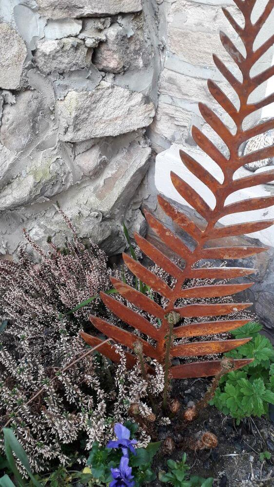 Rusty Fern sat within a planter with heathers and a fern